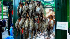 Game birds at a market. Photo courtesy of Wikimedia Commons