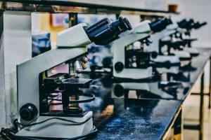 PHA Undergraduate Research Scholarships