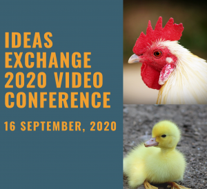 Ideas Exchange Conference 2020 – Program now available